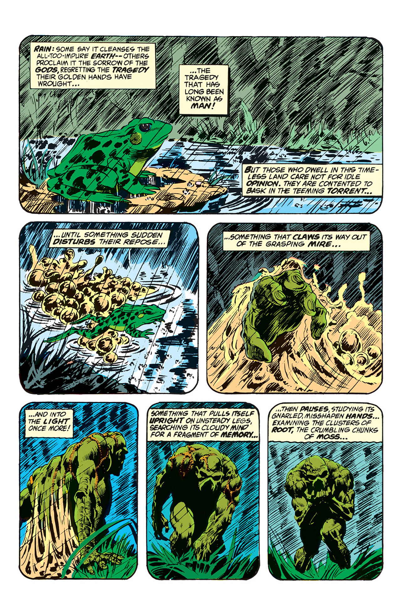 Swamp Thing (1972) Issue #1 #1 - English 15