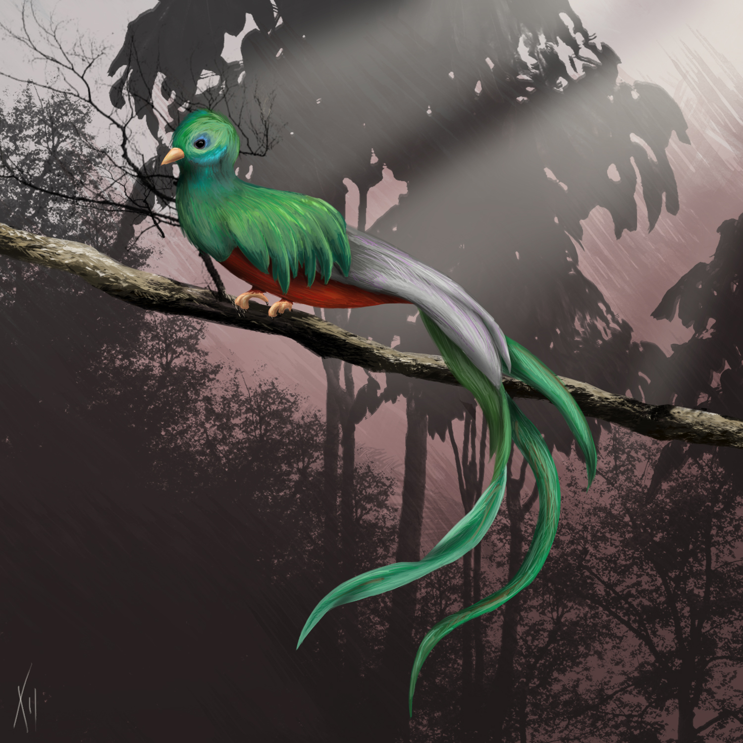 Galleries Related: Quetzal Bird Drawing , Quetzal Bird Flying ,