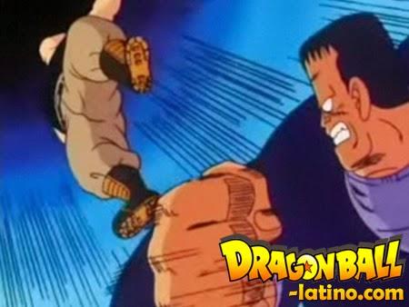 Dragon Ball capitulo 41