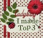 Ladybug Crafts Challenge