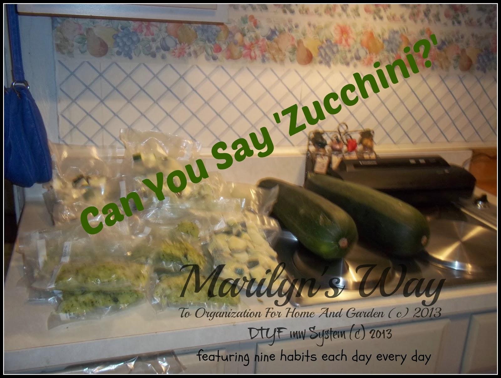 Zucchini Plant Rot One Zucchini Plant
