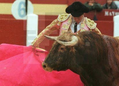 Oviedo toros