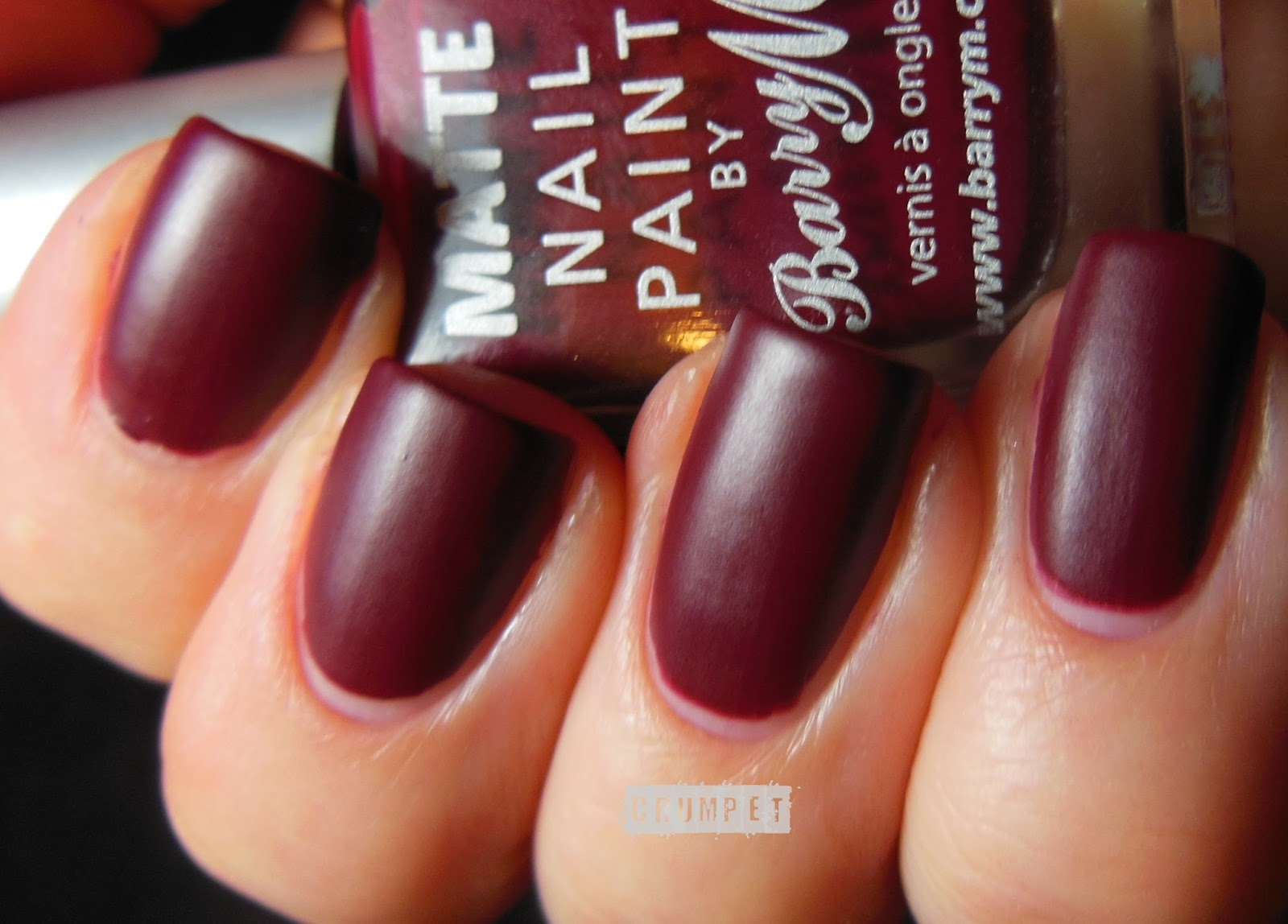 Blood red acrylic nails – Great photo blog about manicure 2017