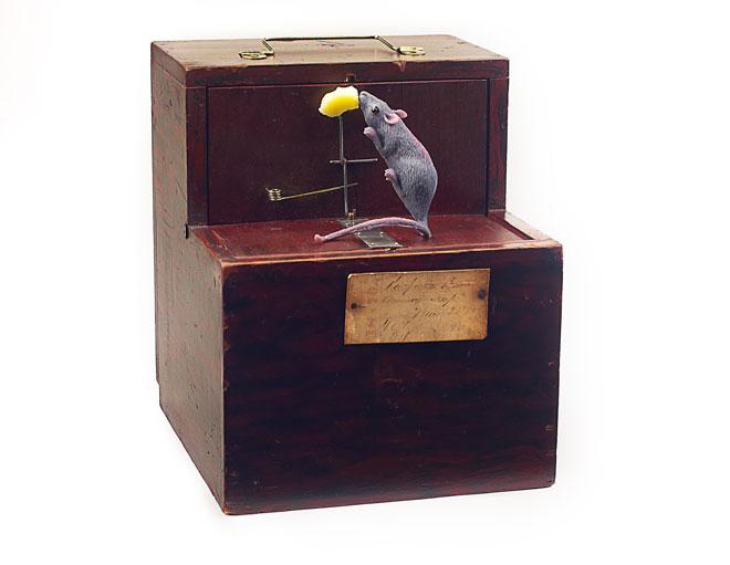MPT Modelos de patentes para inventos del siglo XIX
