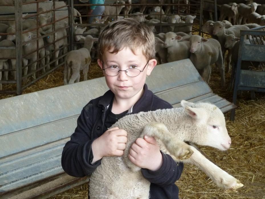 La inocencia de la Humanidad desaparece en cuanto un niño bueno aprende a ser un adulto monstruoso.