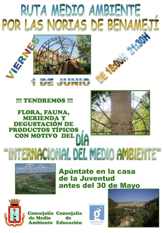 Dia Mundial Medio Ambiente Resumen Dia Mundial Del Medio