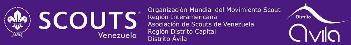 Blog Oficial del Distrito Ávila