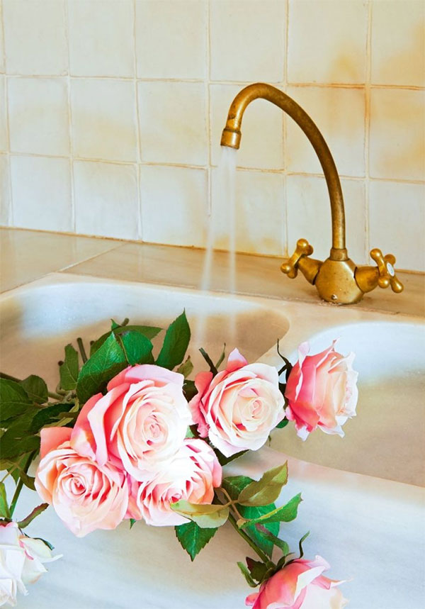 kitchen faucet and Roses