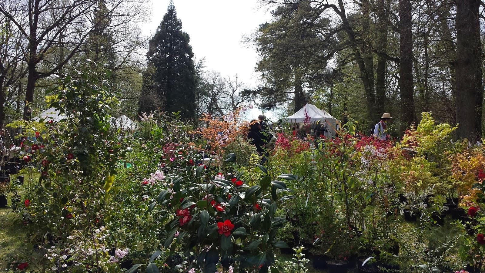 Atelier c te jardin st jean de beauregard printemps 2015 for Jardin printemps 2015