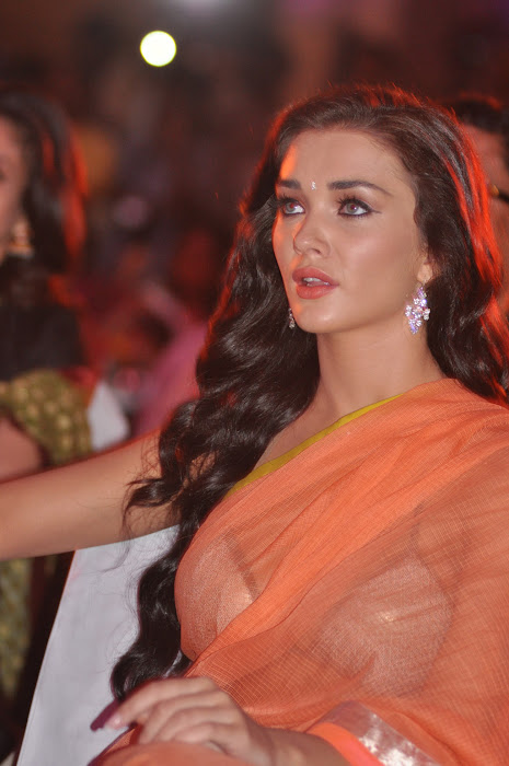 amy jackson spicy at thandavam audio launch actress pics