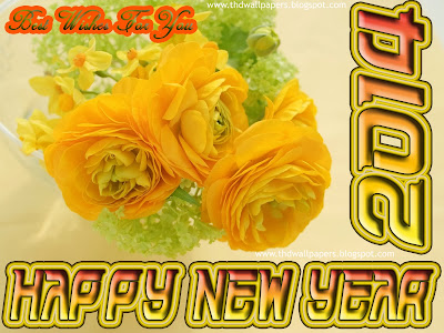 Beautiful Happy New Year 2014 Wallpaper