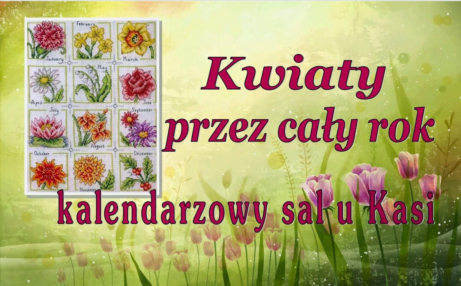 Kwiaty przez cały rok - Sal u Kasi