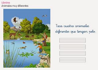 http://www.ceiploreto.es/sugerencias/cp.juan.de.la.cosa/1_2/cono/actividades/06/01/visor.html