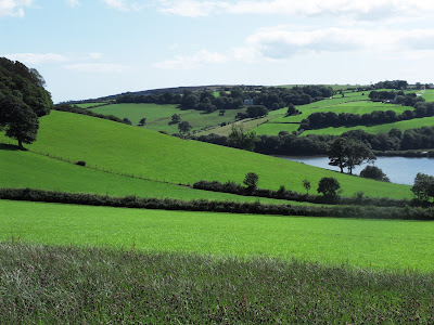 Country side at Lerryn Cornwall