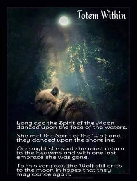 Spirits Of This World The Spirit Of Wolf