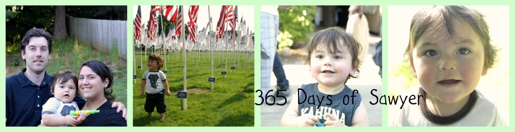 365 Days Of Sawyer