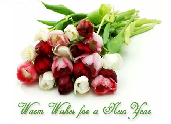 new year wishes flowers