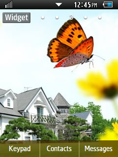 Other  Summer Time Samsung Corby 2 Theme 3 Wallpaper