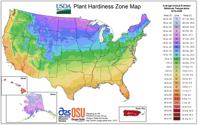 Usda releases new hardiness zone map root simple for What garden zone am i