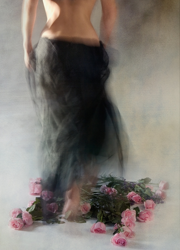 Miriana Mitrovich | Bulgarian-born Canadian Abstract photographer | Four Dozen Roses