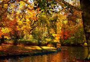 Cuando llega el otoño, los árboles de hoja caduca renuevan órganos que . otoã±o