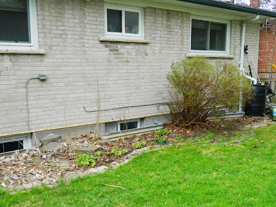 Graydon spring garden cleanup before Paul Jung Gardening Services Toronto