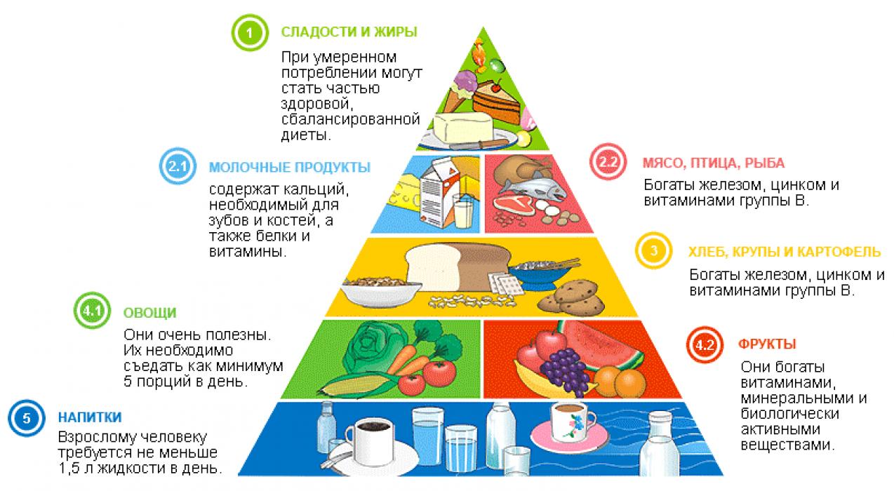 правильное питание меню из простых продуктов