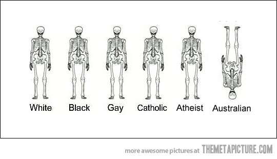 http://2.bp.blogspot.com/-l4xNxD_QZrs/VYZ-PeIVdVI/AAAAAAAAA7s/e6pLLNxAU3Q/s1600/funny-skeletons-white-black-gay.jpg