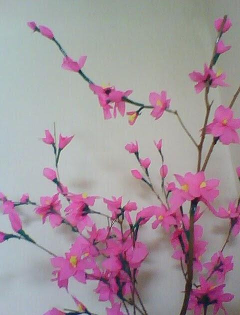 Cara Membuat Bunga Sakura Related Keywords Cara Membuat