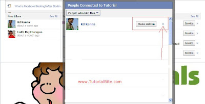 How to remove someone from a Facebook fan page