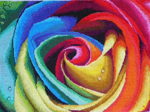 SAL Tęczowa Róża