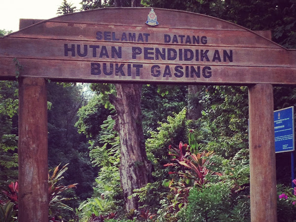 Hiking at Bukit Gasing, Petaling Jaya