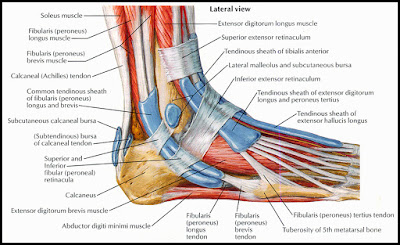 foot pain running