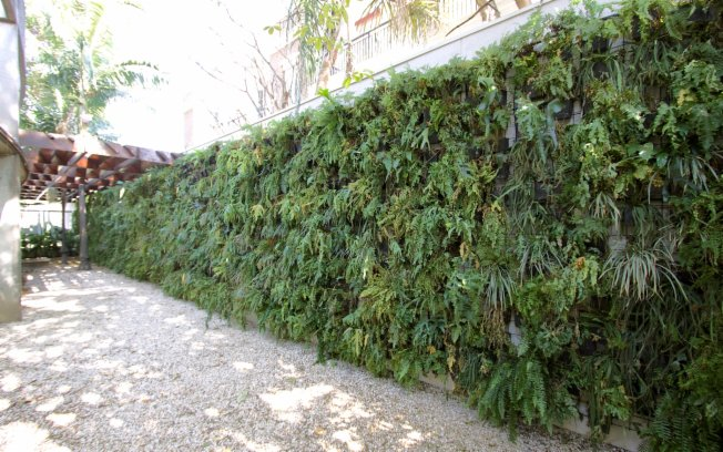 plantas jardim vertical meia sombra : plantas jardim vertical meia sombra:Decora Interi : Jardins Verticais Externos