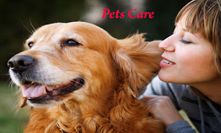 Pets Care food and supplies