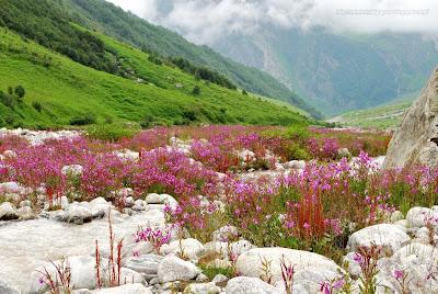 Kumpulan Gambar Pegunungan Paling Keren