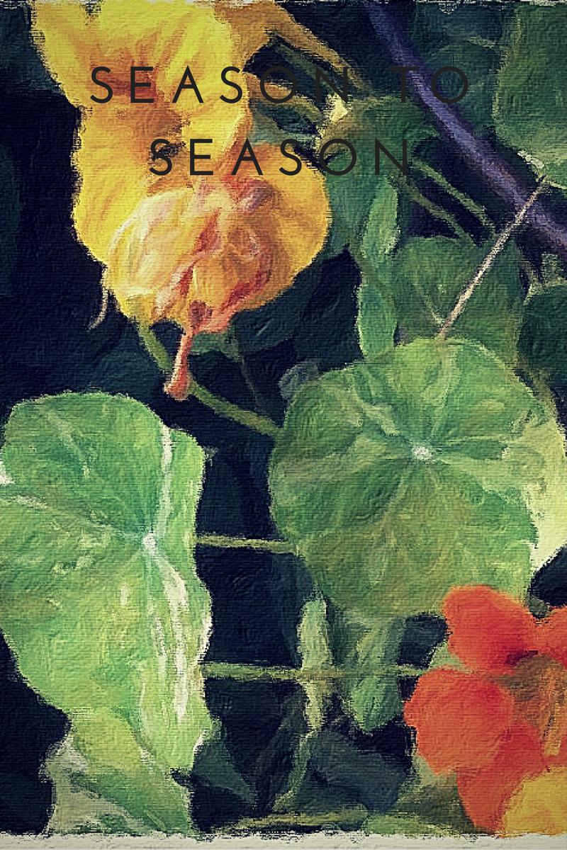 SEASON-TO-SEASON