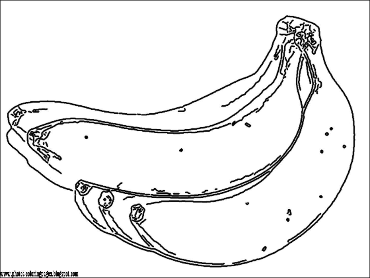 the cartoon coloring pages photos coloring page of most common fruits