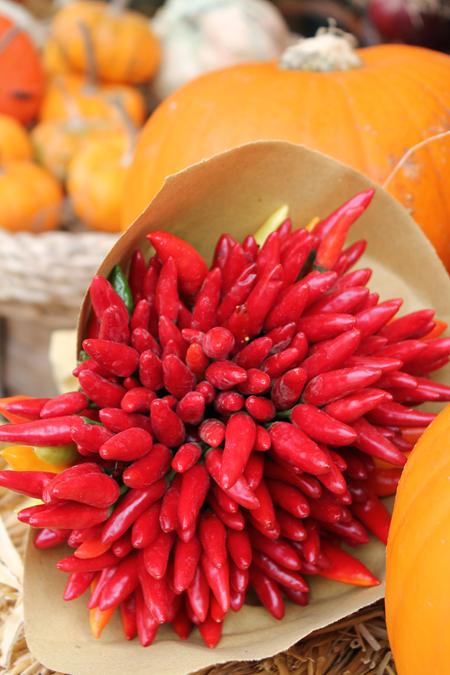 Giochi di carta post rosso for Anthurium rosso