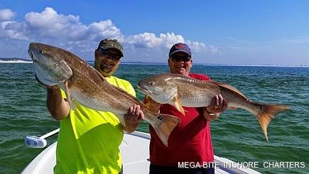 Mega bite inshore charters spring break fishing for Pensacola fishing charters