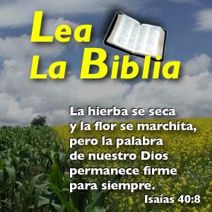 imágenes con frases biblicas