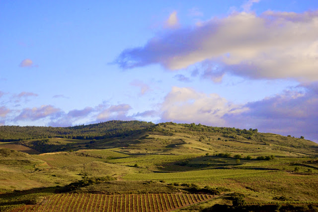 Paisajes del Vino en Rioja Alavesa