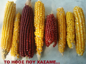 Οι ντόπιοι σπόροι...από χέρι σε χέρι...