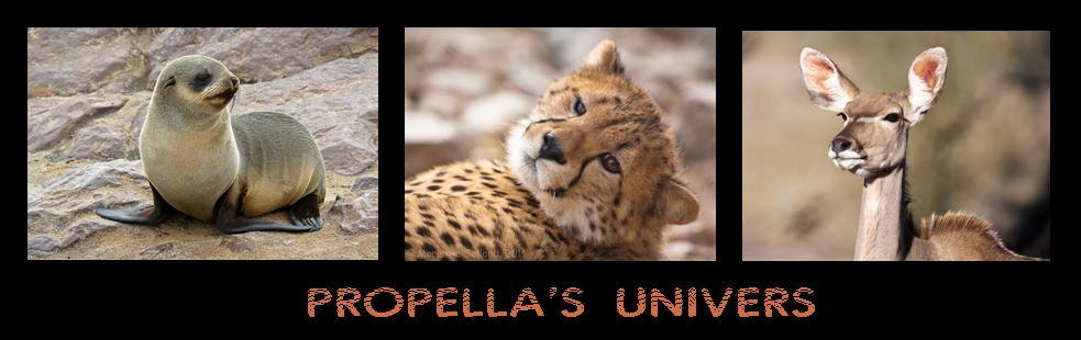 Propella's Univers