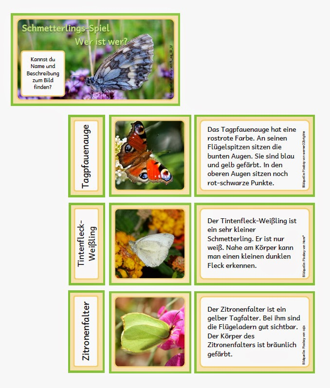 Wie Viele Arten Von Sofas Kennen Sie: Krabbelwiese (im Ruhemodus): Schmetterlingsarten