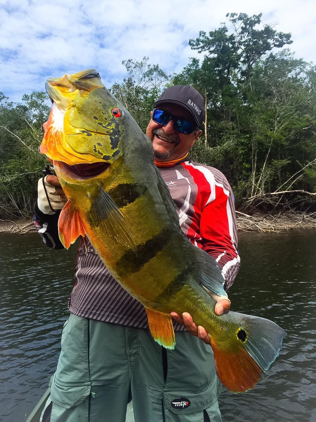 Tucunaré - Amazônia