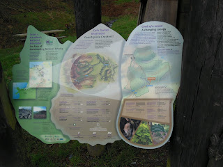 Moel Famau trail map
