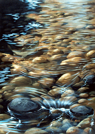 A little of that in those commas pebbles for Small river pebbles