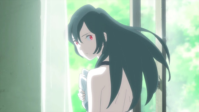 Taifuu no Noruda Anime