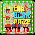 The Right Prize Video Slot Game